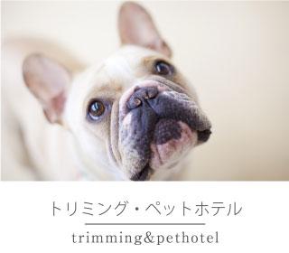 トリミング・ペットホテル